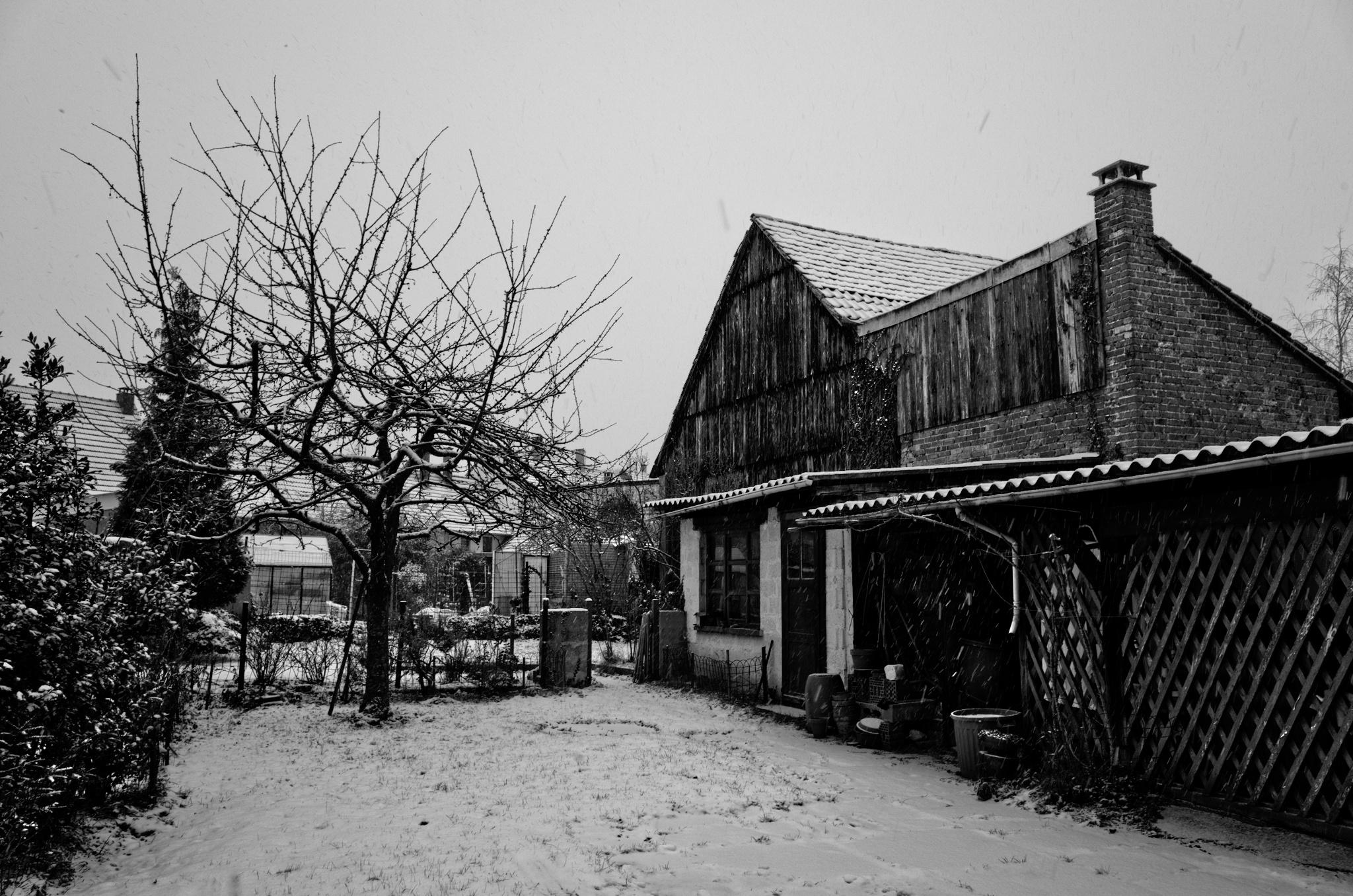 Un voyage #1 – Noël en Alsace